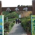 爪木崎灯台の水仙祭り